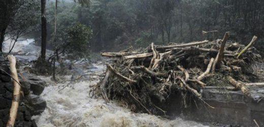 Kerala floods: Red alert in 12 of 14 districts, Kochi airport shut tillSaturday.