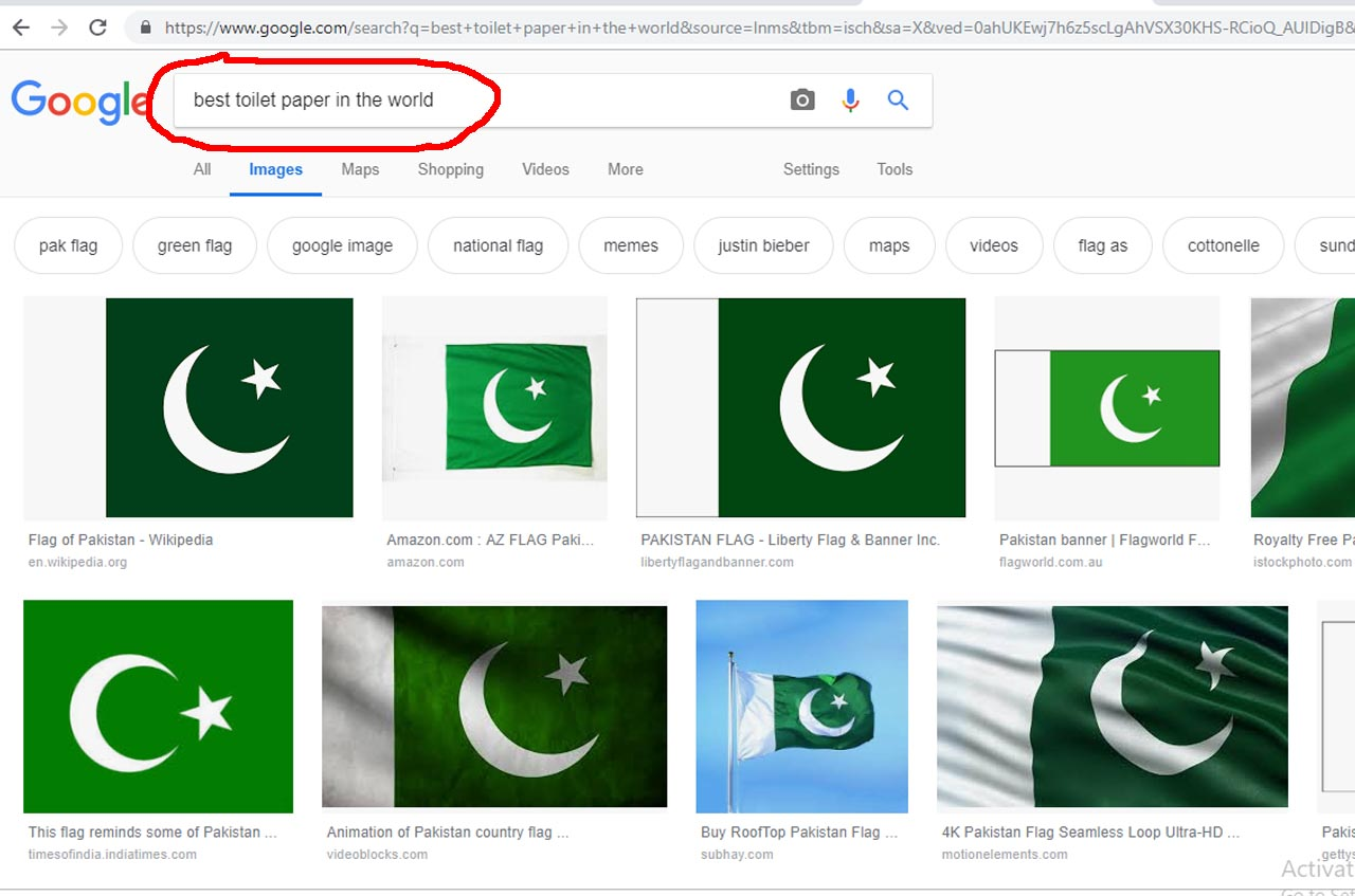 In Google Search Pakistan Flag Is The Best Toilet Paper