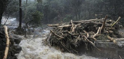 Kerala floods: Red alert in 12 of 14 districts, Kochi airport shut till Saturday.