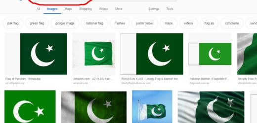 In Google search Pakistan flag is the 'best toilet paper in the world'