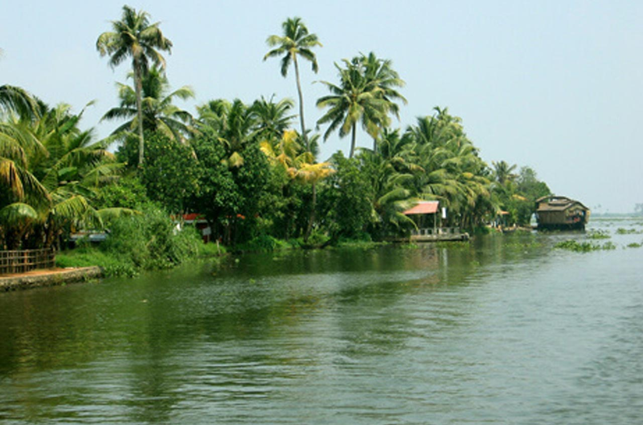 Backwaters what make your Kerala trip awesome!